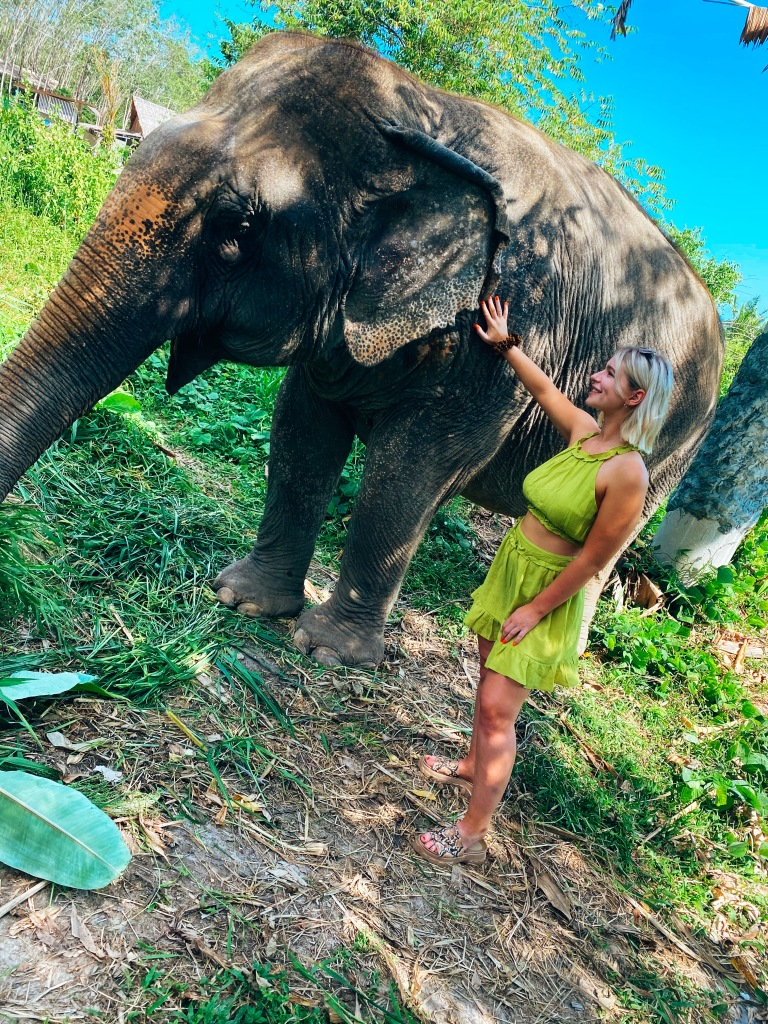Meeting the elephants at Phuket Elephant Park